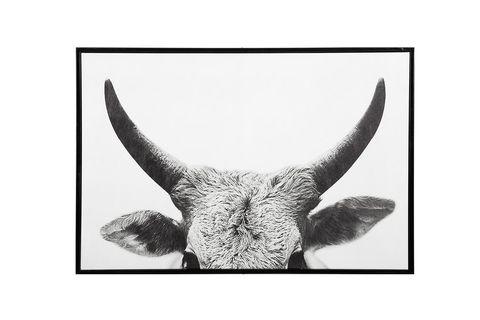 Horn Wall Art